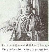 youngkarmapa_16_year_old